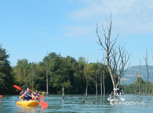 19 Décembre 2021 – Ain – La dernière Bis de l'année en canoë et kayak