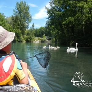 TOPO – Le Canal de Savière – 6 à 12Km
