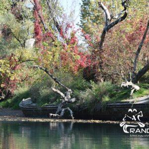 TOPO Le canal de Jonage – Cusset à Cité Internationale – 6Km