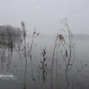 TOPO Lac des Eaux Bleues – Grand Parc de Miribel – 8Km