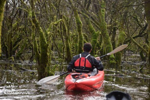TOPO Ruisseau Les Rousses – Luyrieu à Pont d'Aignoz – 4 Km